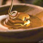 Mel de abelhas: Remédio ou alimento? Veja os benefícios para saúde.